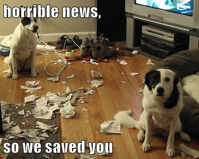 horrible news,  so we saved you