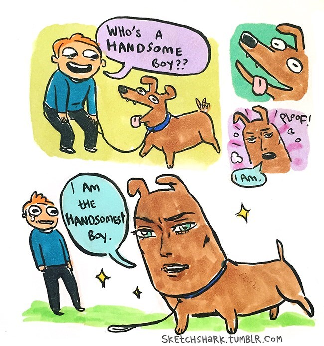 funny-handsome-face-implant-dog-web-comics