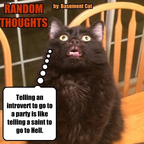 RANDOM THOUGHTS by: Basement Cat Telling an introvert to go to a party is like telling a saint to go to Hell.