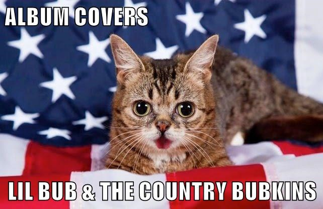 animals lil bub country album caption Cats
