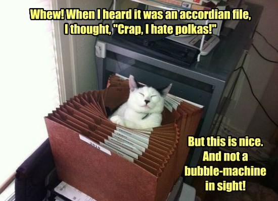 hate cat file polkas accordian bubble caption machine - 8803827456