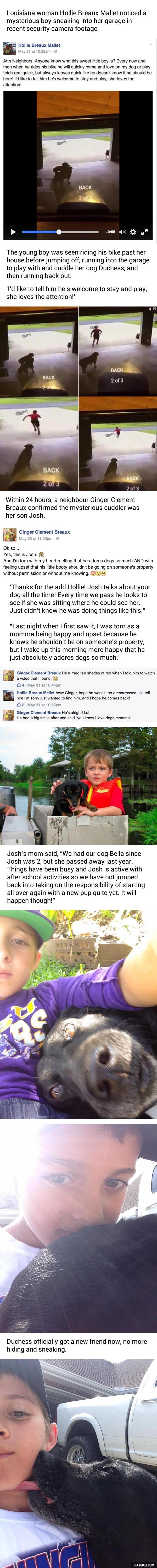 boy dogs hugs caption security camera little - 8804046336