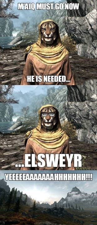 elder scrolls,video games,video game logic,funny