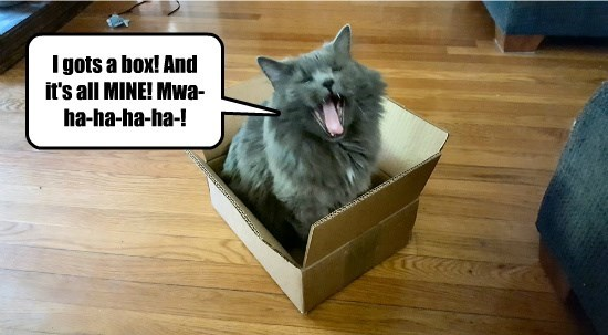 YAY! BOX!