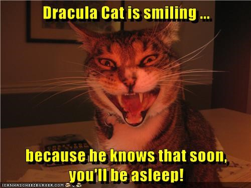 animals cat smiling SOON asleep be youll caption dracula - 8804187904