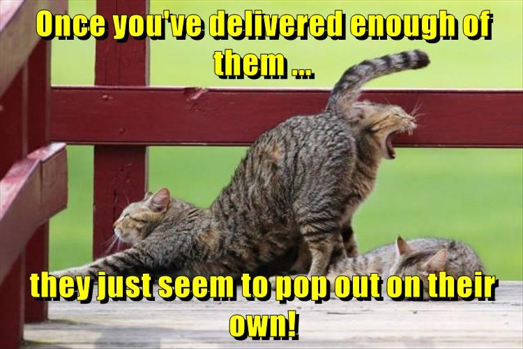 Once you've delivered enough of them ...  they just seem to pop out on their own!