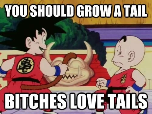 tail,dragonball z,funny