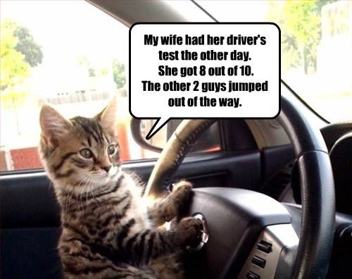 guys cat 10 jumped wife drivers other test caption 8 got
