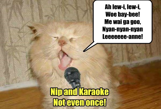 Cats caption nip karaoke - 8805167360