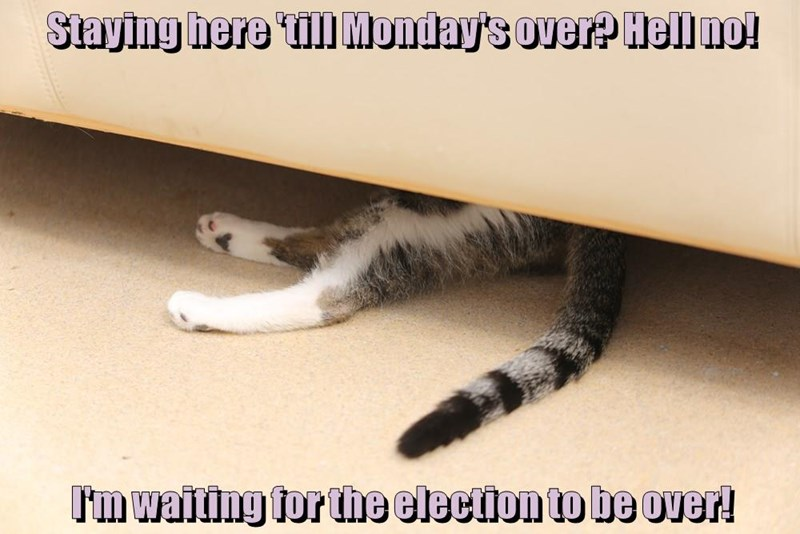 Staying here 'till Monday's over? Hell no! I'm waiting for the election to be over!
