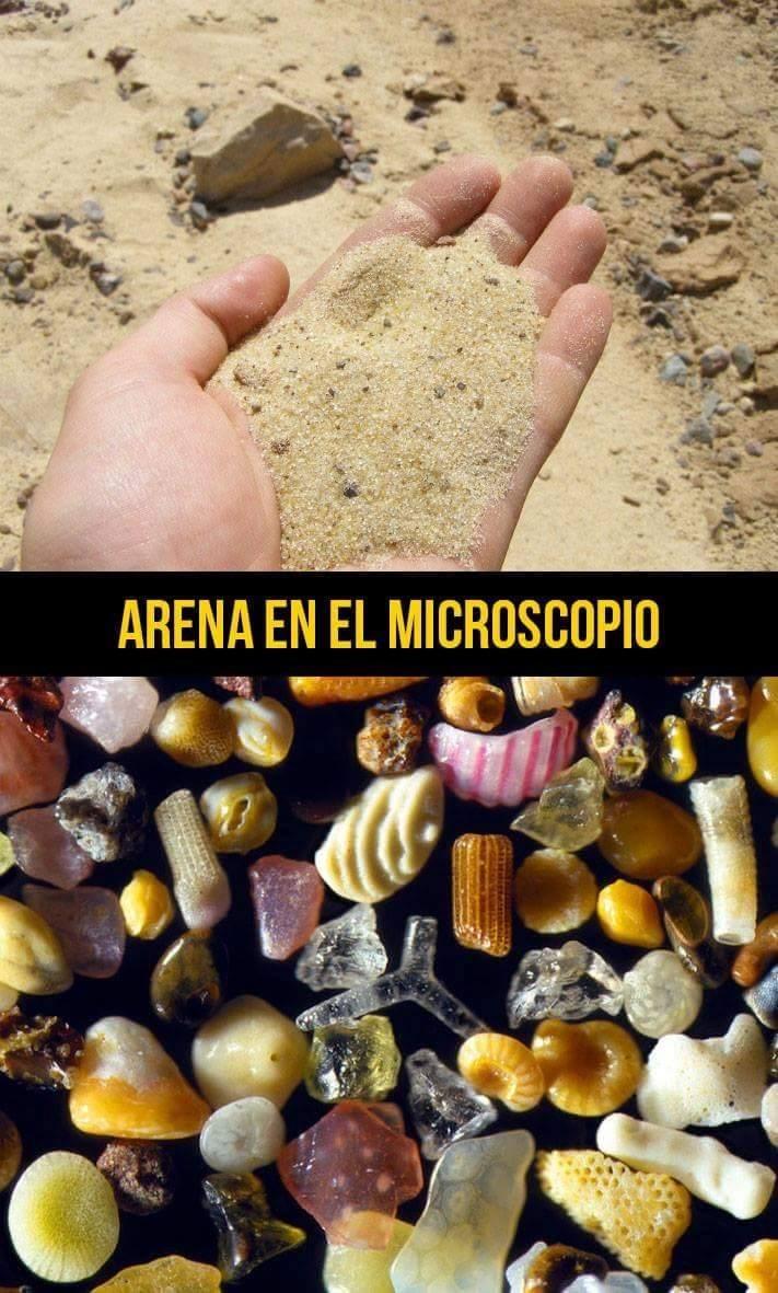 arena en microscopio