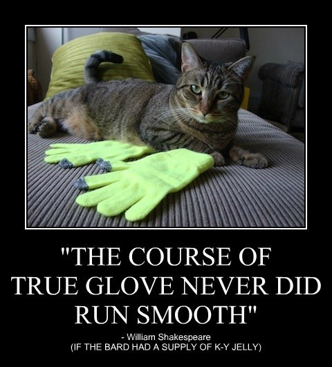 """""""THE COURSE OF TRUE GLOVE NEVER DID RUN SMOOTH"""""""