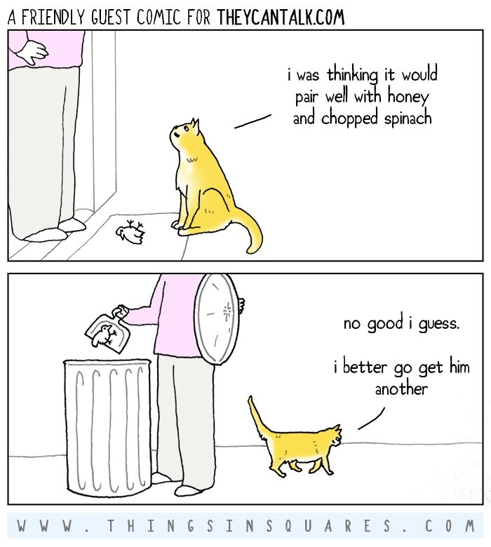 web-comics-why-your-cat-keeps-bringing-you-food