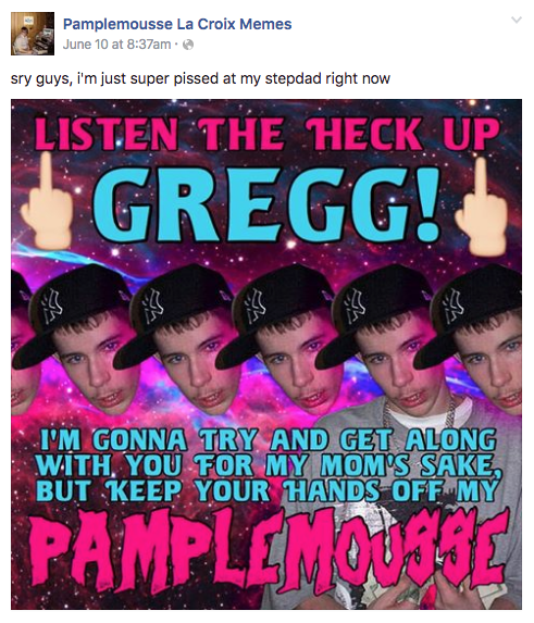 Text - Pamplemousse La Croix Memes June 10 at 8:37am sry guys, i'm just super pissed at my stepdad right now LISTEN THE HECK UP GREGG! REO I'M GONNA TRY AND GET ALONG WITH YOU FOR MY MOM'S SAKE BUT KEEP YOUR HANDS OFF MY PAMPLEMOUSSE