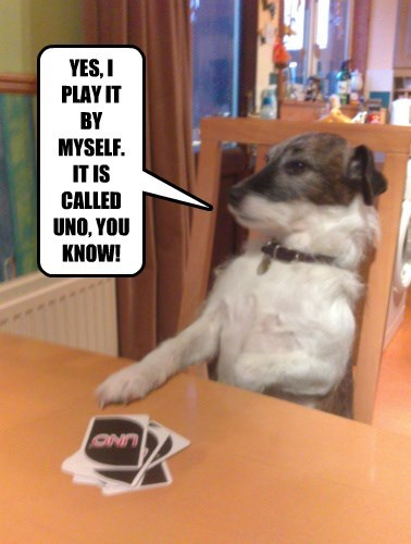 uno dogs myself play caption - 8805957120