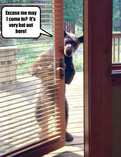 Excuse me may I come in?  It's very hot out here!
