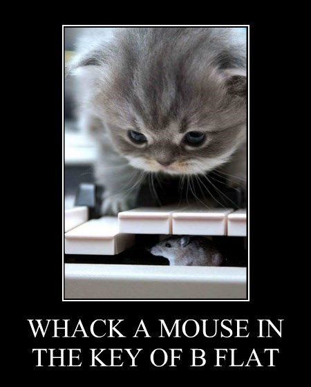 WHACK A MOUSE IN THE KEY OF B FLAT