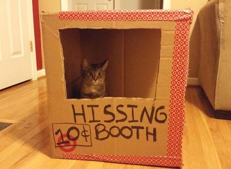 hissing booth