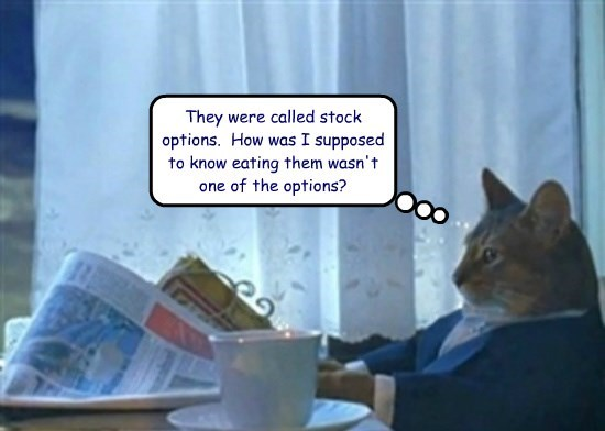 Be specific with Business Cat