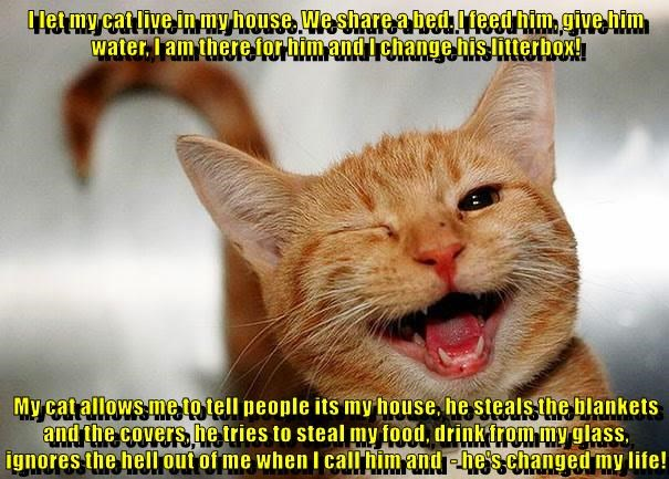 I let my cat live in my house. We share a bed. I feed him, give him water, I am there for him and I change his litterbox!  My cat allows me to tell people its my house, he steals the blankets and the covers, he tries to steal my food, drink from my glass,