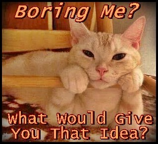 Boring Me?  What Gave You That Idea?