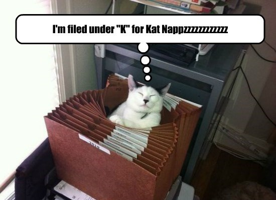 And I fits too!