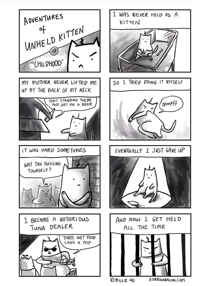 web-comics-hard-life-for-kittens-that-dont-get-tender-loving-care