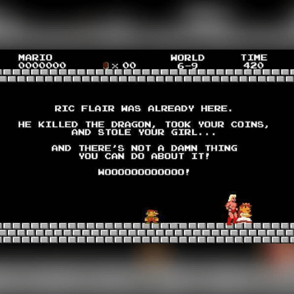 nintendo-super-mario-bros-video-game-joke
