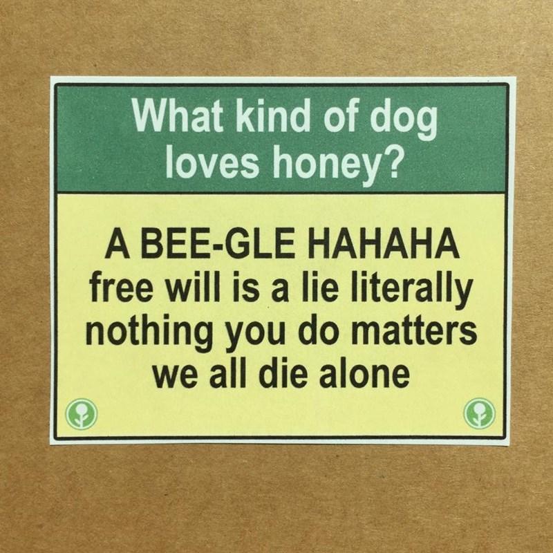 image prank free will HA-HA!