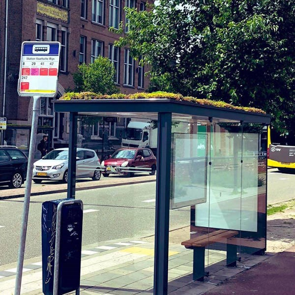 bees netherlands bus stops
