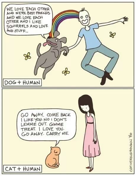 dogs,human,web comic,Cats
