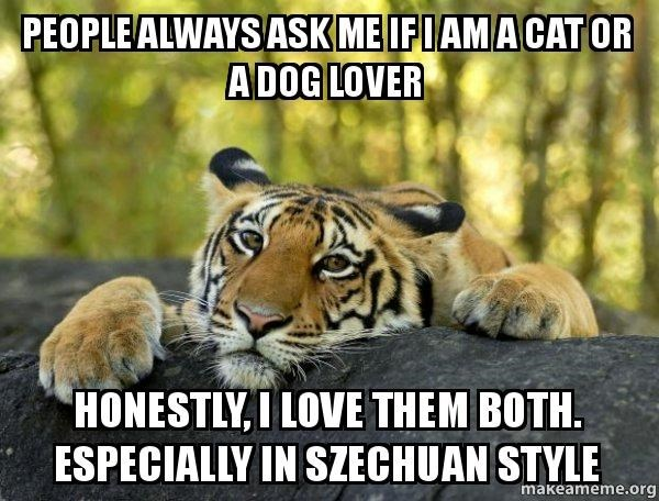 cat dogs tiger meme caption szechuan - 8810686464