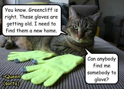 Somebody To Glove. Anybody?