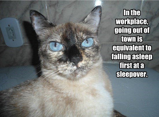 In the workplace, going out of town is equivalent to falling asleep first at a sleepover.