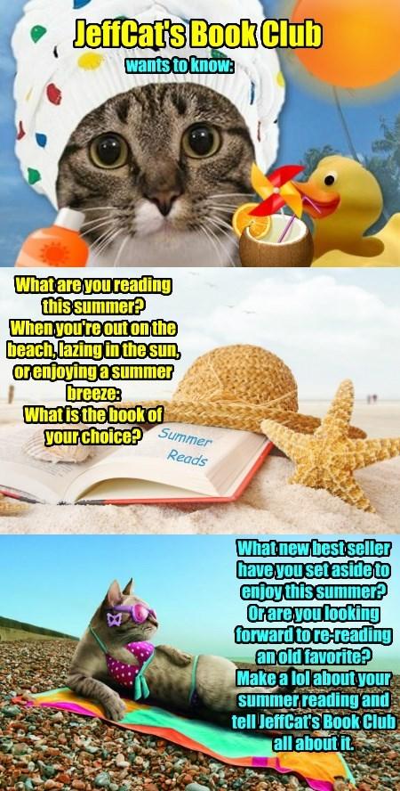 old,best,seller,club,reading,summer,jeffcat's,favorite,book,caption