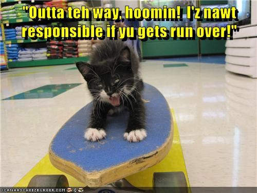 """Outta teh way, hoomin! I'z nawt responsible if yu gets run over!"""