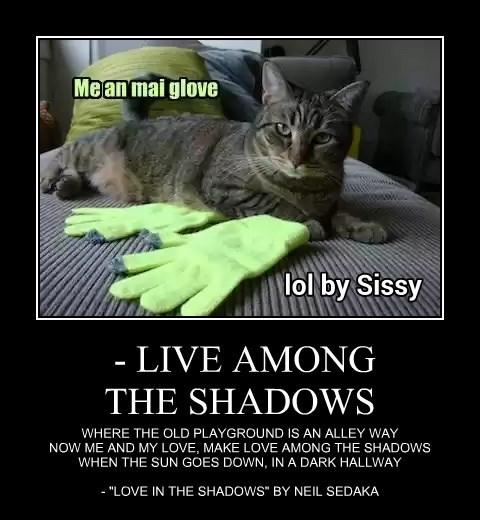 - LIVE AMONG THE SHADOWS