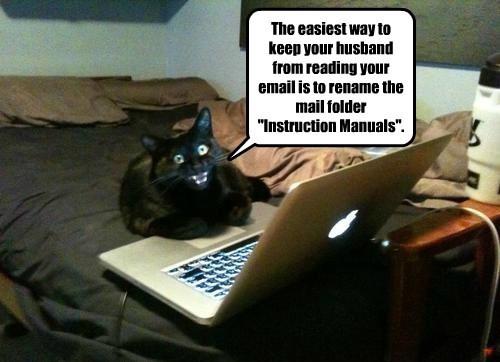 caption laptop Cats - 8811909120