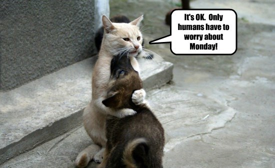 It's OK.  Only humans have to worry about Monday!