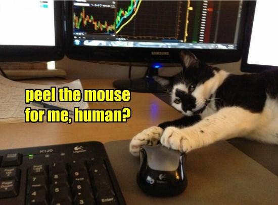 cat human peel caption mouse - 8811939584