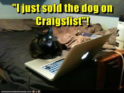 Meme of a cat at a computer that has just sold the dog on Craigslist