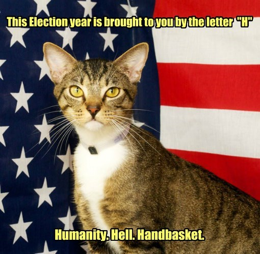 hell handbasket year by letter h brought humanity election caption Caturday - 8811986176