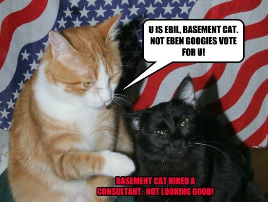 basement cat,captioned,consultant,hired,goggies,vote