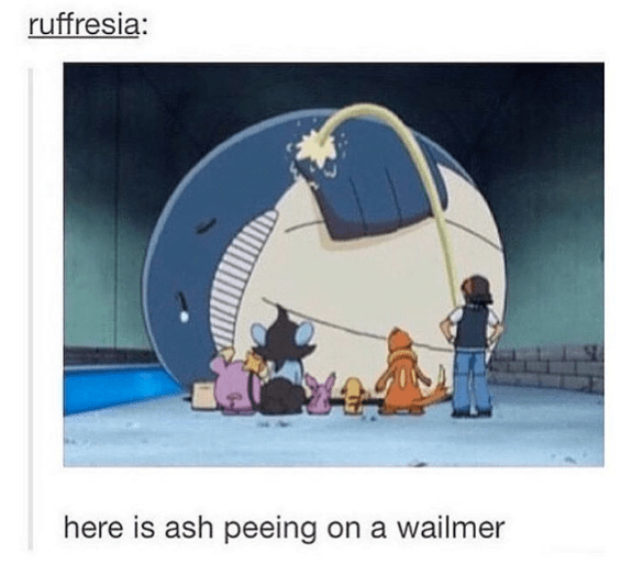 wailmer-pokemon-tv-show-moment-ash-no-chill