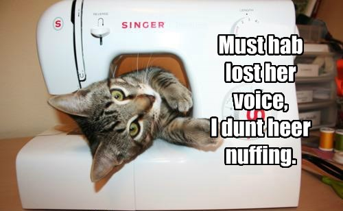 Must hab lost her voice,  I dunt heer nuffing.