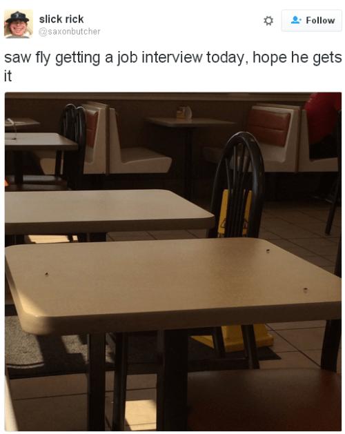 twitter fly job interview - 8812278272