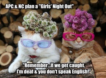 """APC & NC plan a """"Girls' Night Out"""""""