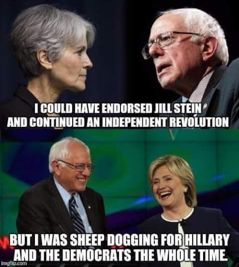 Jill Stein bernie sanders Hillary Clinton Democrat - 8812322560