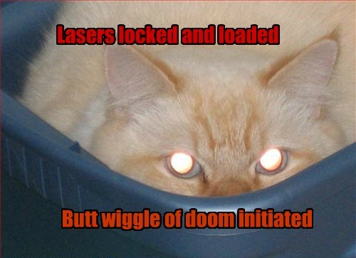 USS Kitteh Ready to Launch Attack pattern Omega