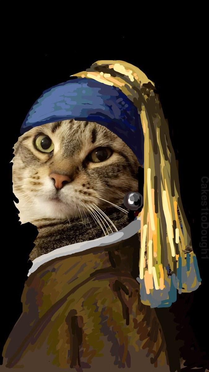 Cat - Cakes1toDought